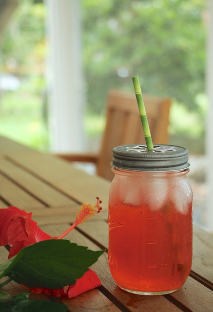 hibiscus tea on the porch