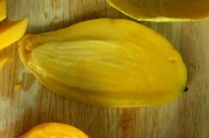 mango pit (1)