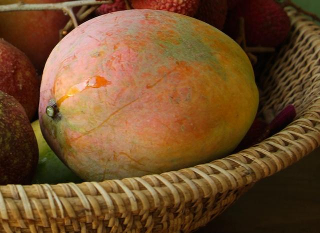 mango sap (1)