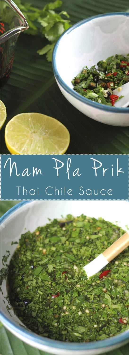 Nam Pla Prik, Thai chiles with lime juice, fish sauce, garlic, cilantro, and a little bit of ginger... Satima's special recipe! Great with seafood.