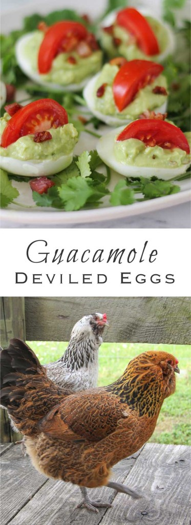 Guacamole Deviled Eggs, a crazy mixed up combination of snacks that's greater than the sum of its parts!
