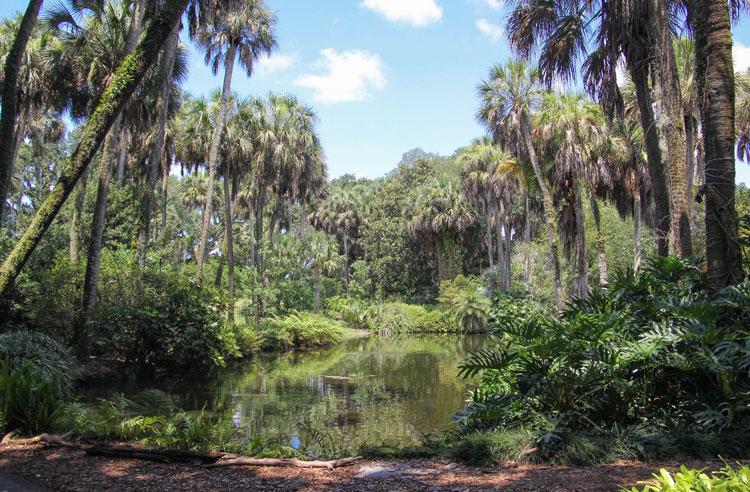 Bok Tower pond