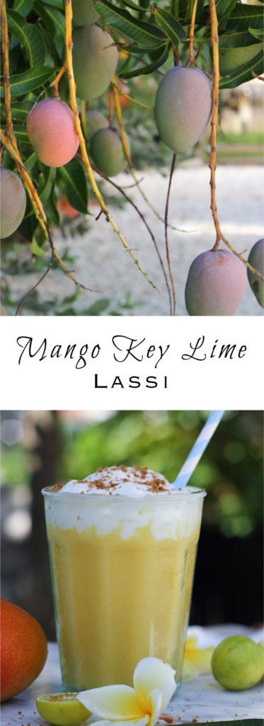 Like a mango smoothie with a slice of key lime pie thrown in! Tropical sweet-tart flavor with a swirl of whipped cream and a sprinkle of ginger snap crumbs. Make it as healthy or as decadent as you like, and add rum if you're feeling spunky.
